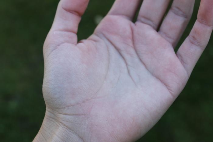 Jak vyčíst osud z dlaně