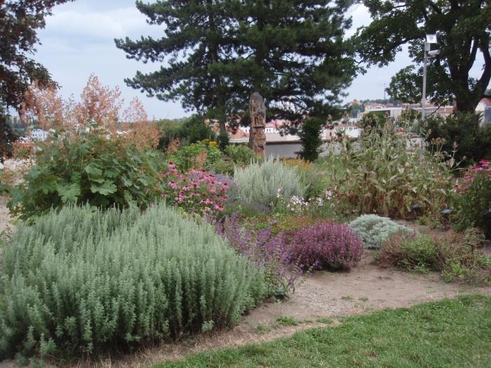 Jak vytvořit bylinkovou zahrádku